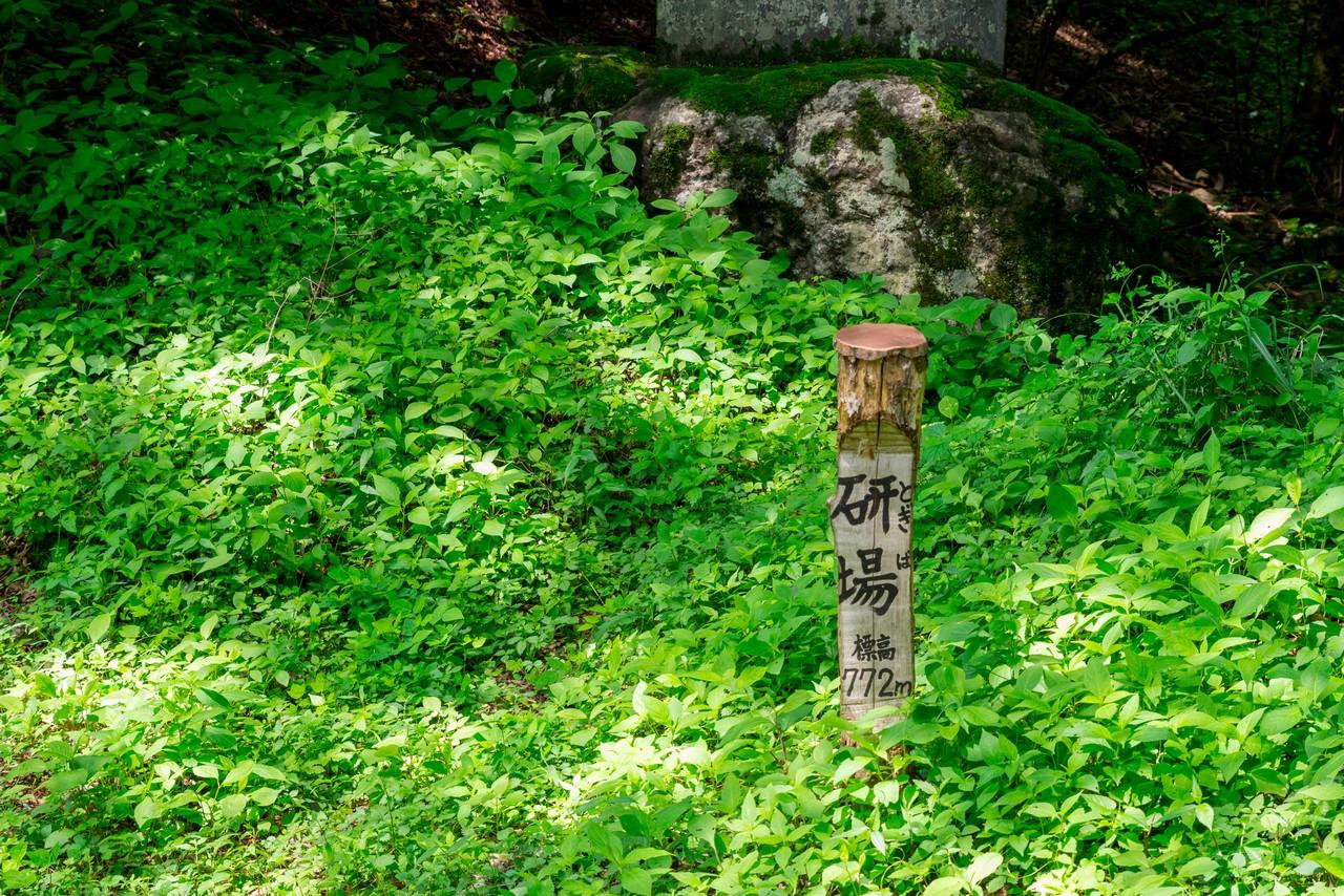 甘利山公園線 研場