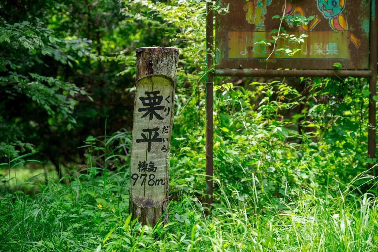 甘利公園線 栗平