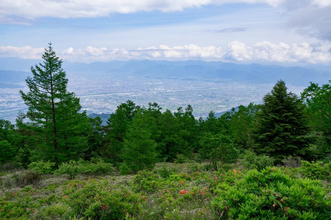甘利山から見た甲府盆地