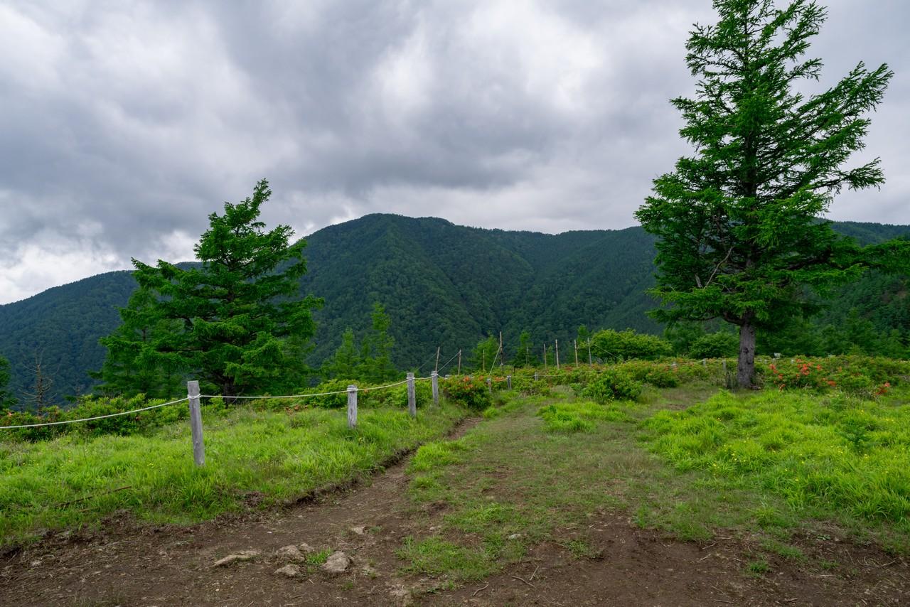 甘利山から見た千頭星山