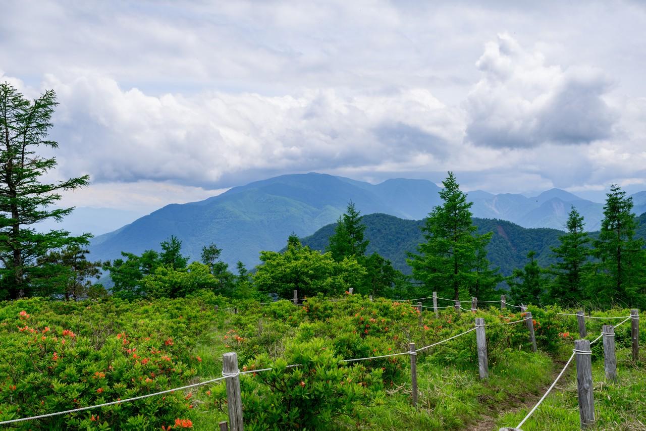 甘利山から見た櫛形山