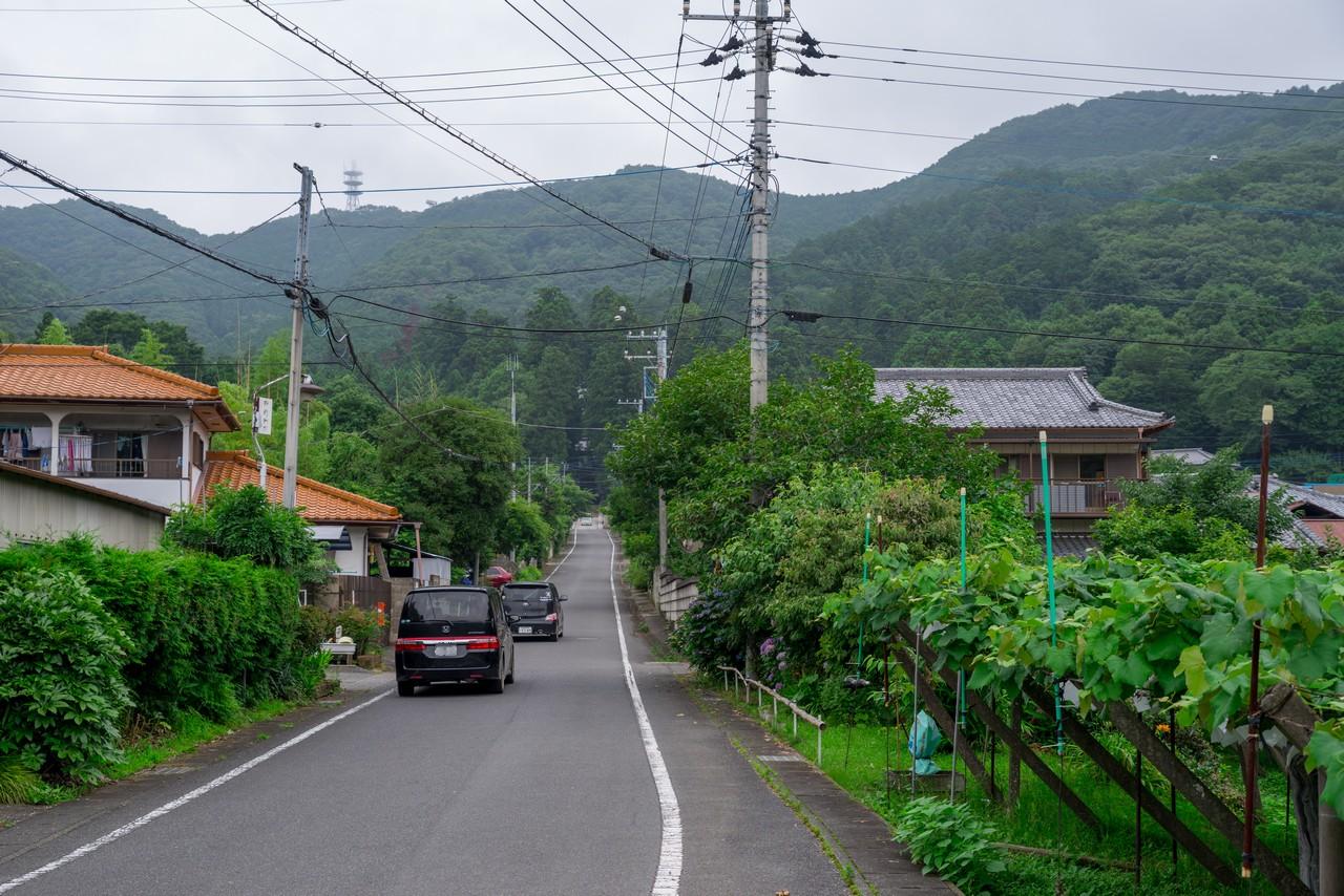 200705太平山-026
