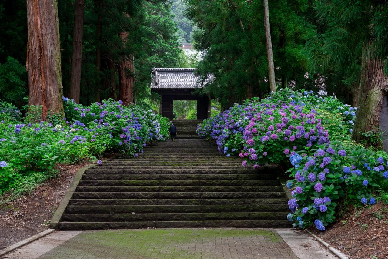 200705太平山-028