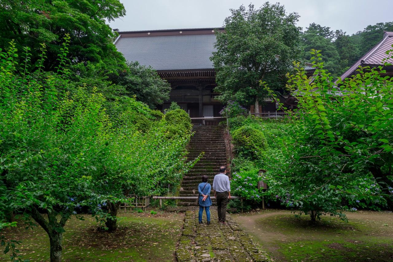 200705太平山-032