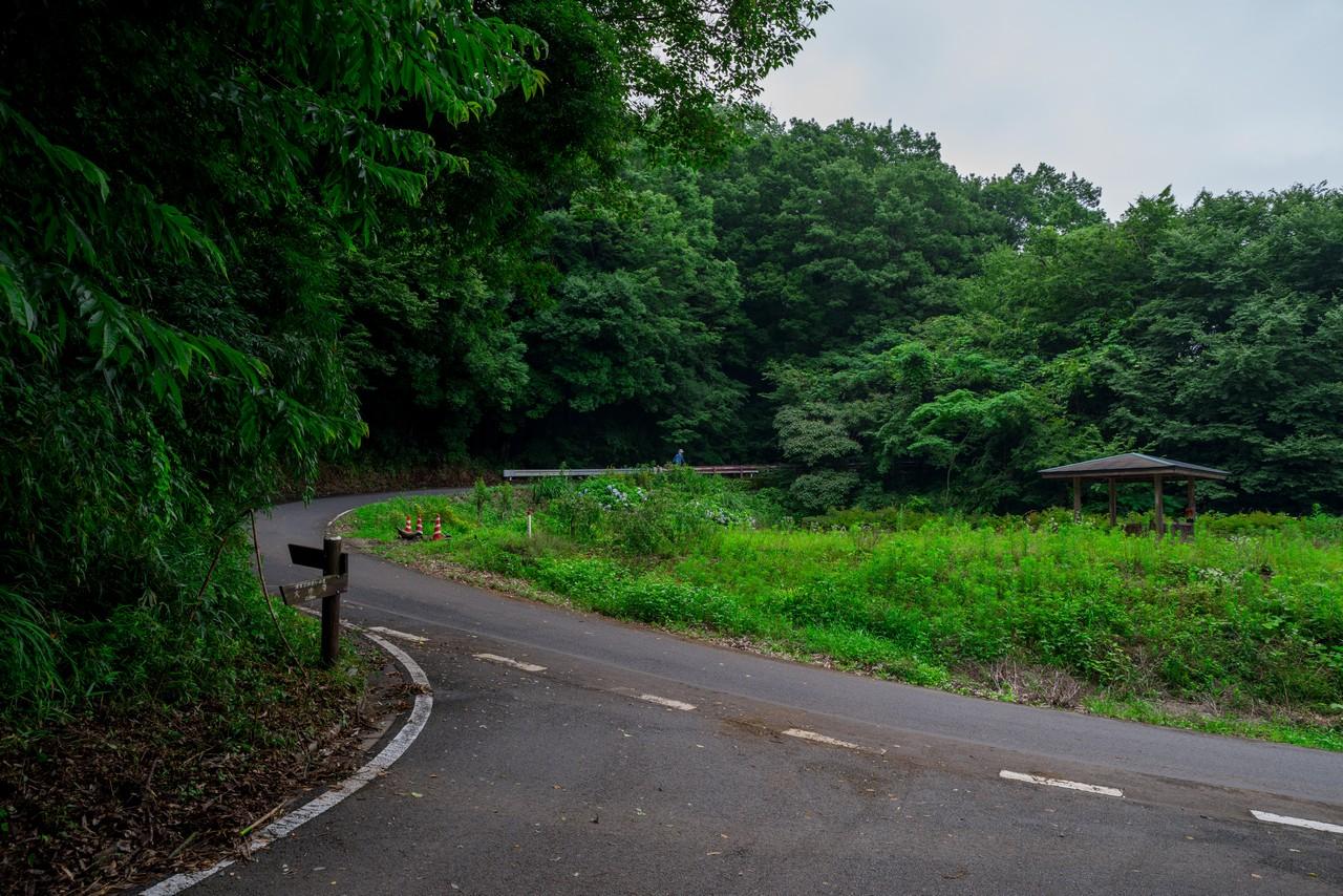 200705太平山-038