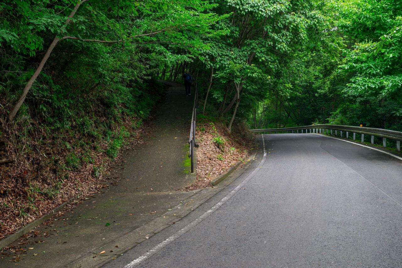 200705太平山-039