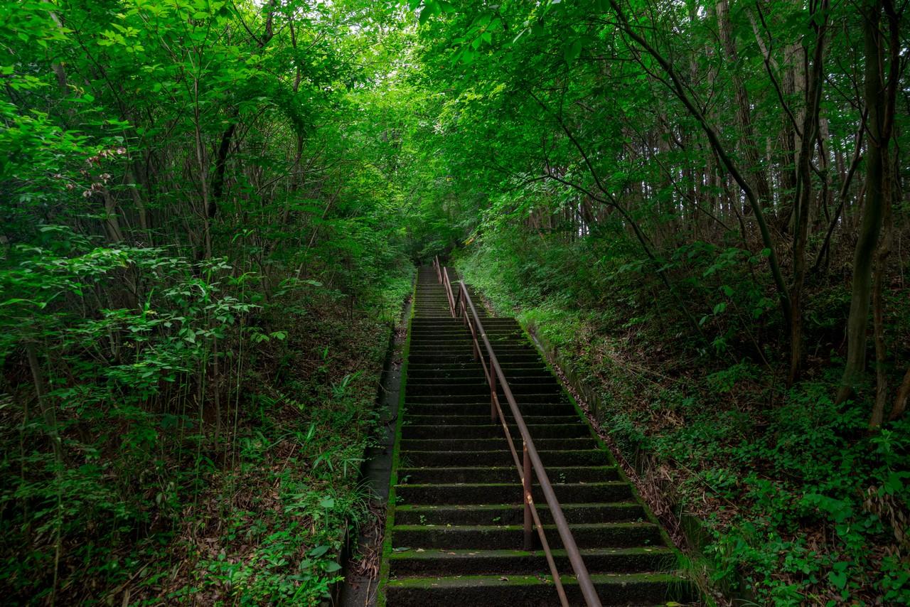 200705太平山-040