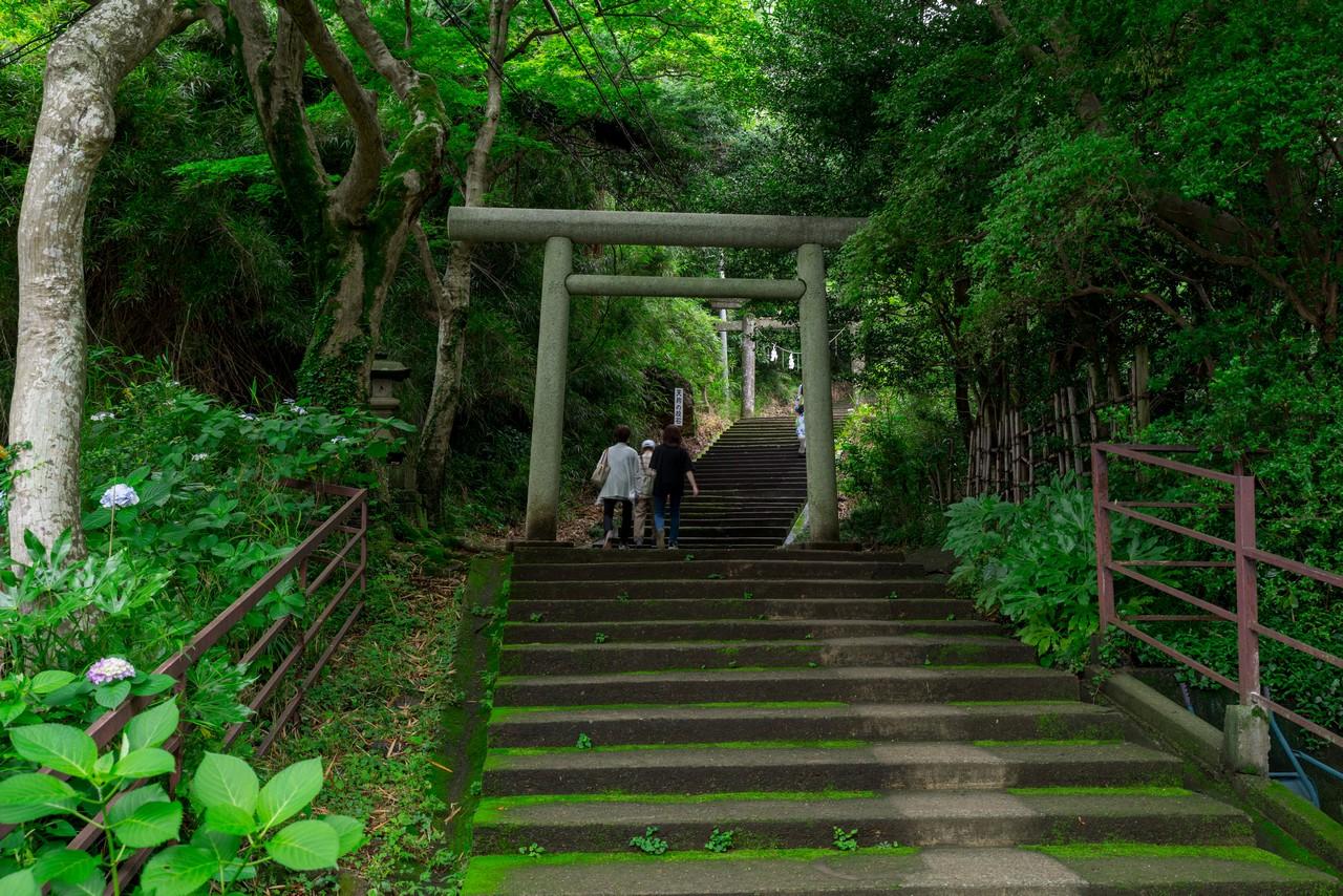 200705太平山-051