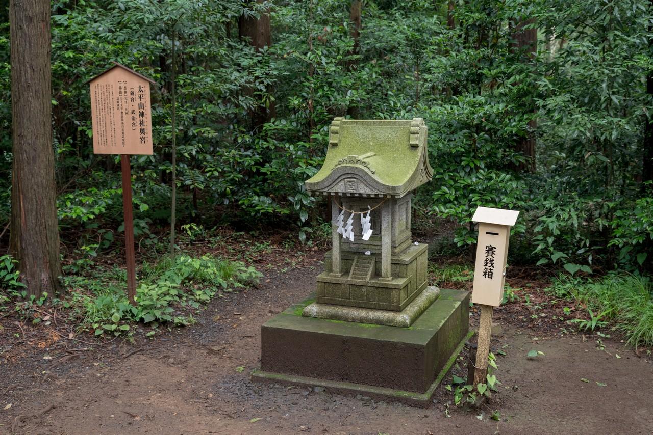 200705太平山-064