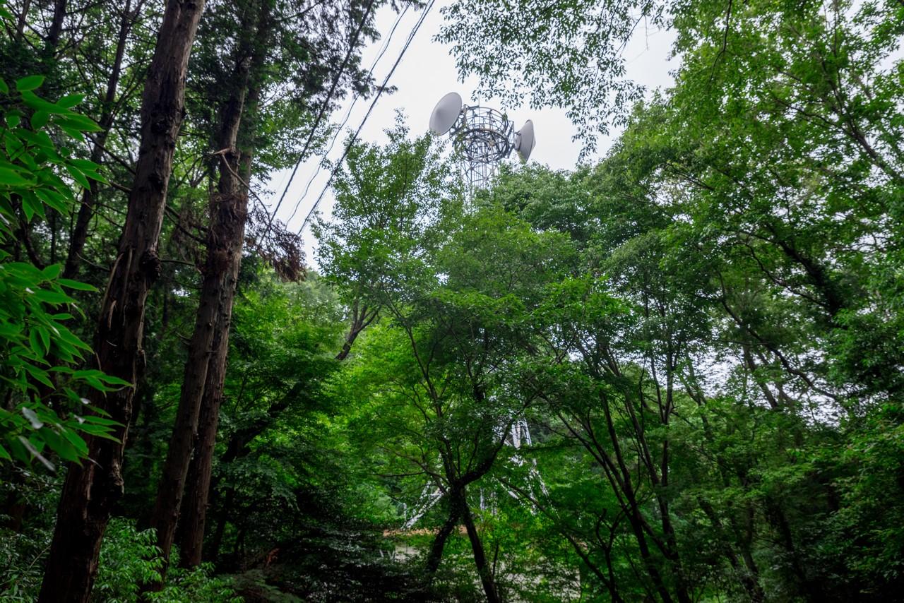 200705太平山-074