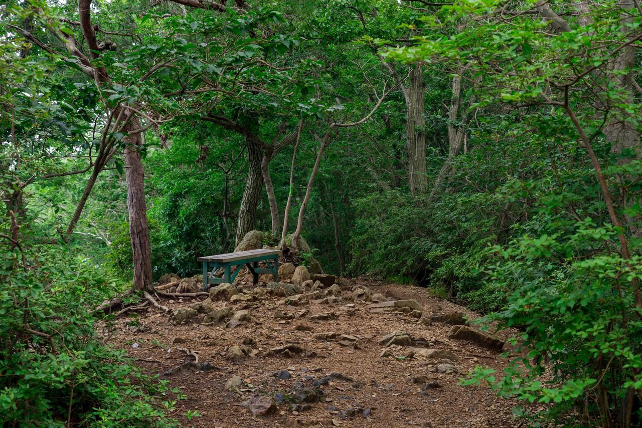 200705太平山-076