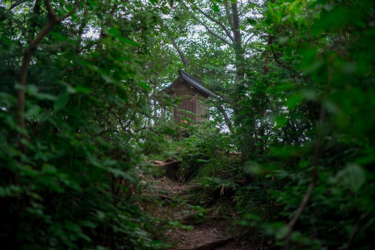 200705太平山-079