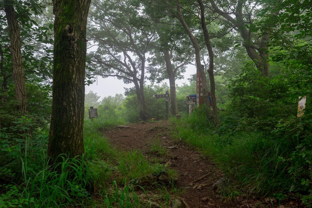 200705太平山-091