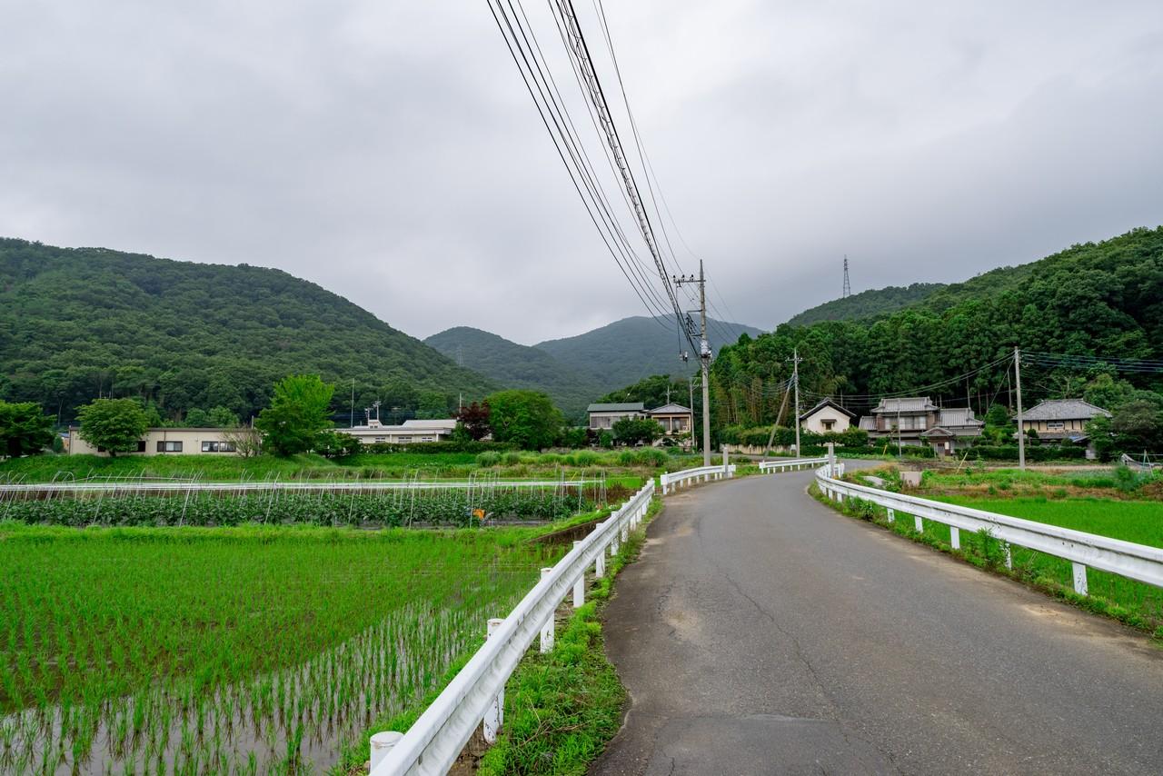 200705太平山-100