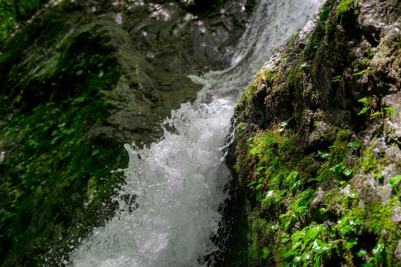200712大岳山-042