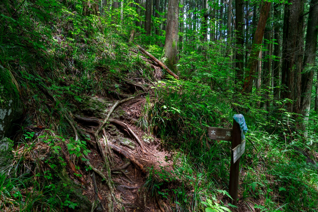 200712大岳山-052