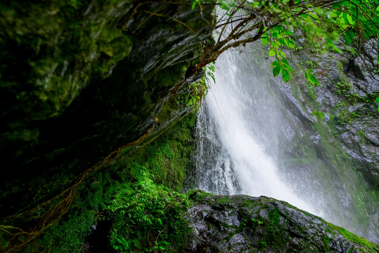 200712大岳山-062