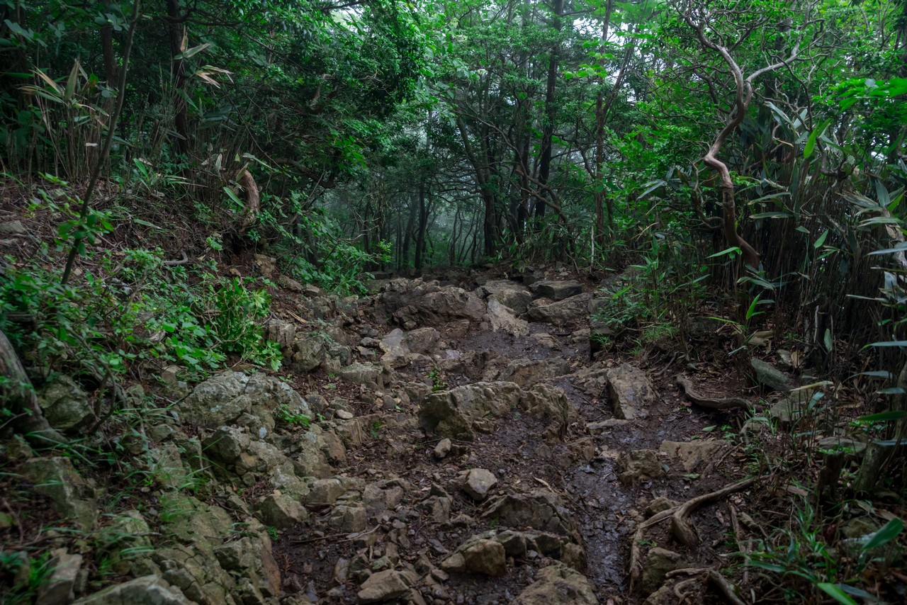 200712大岳山-083
