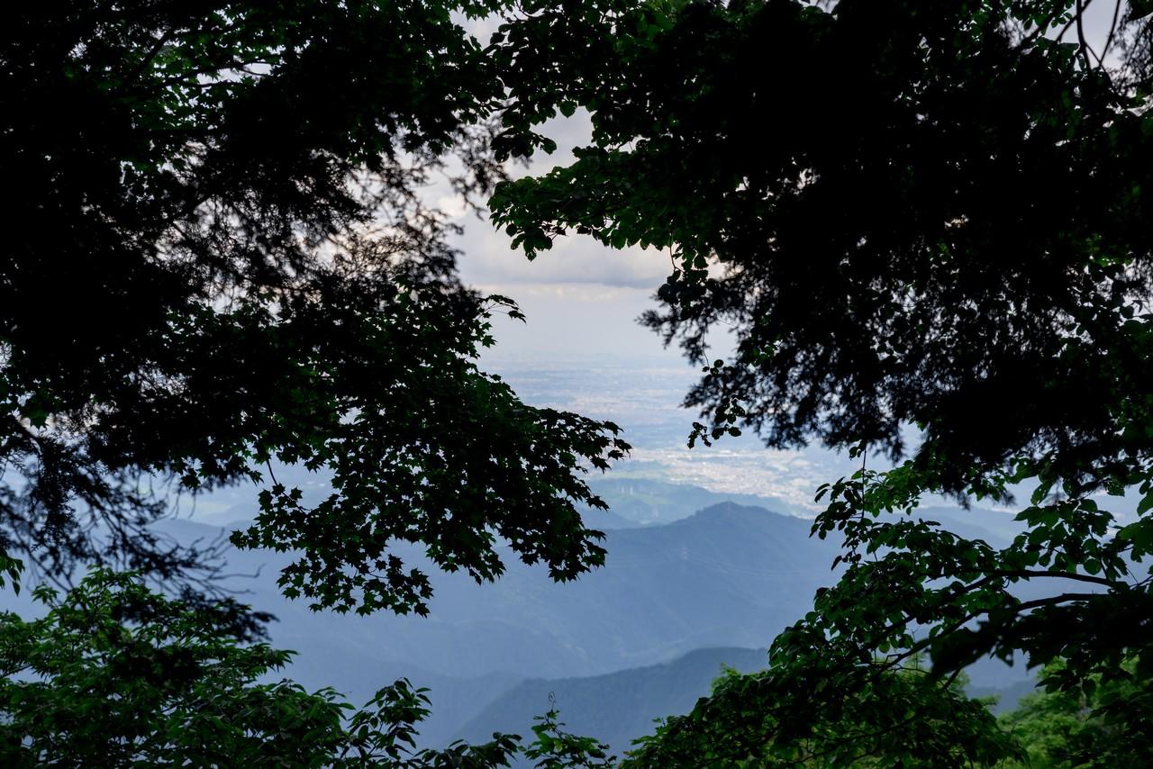 200712大岳山-085