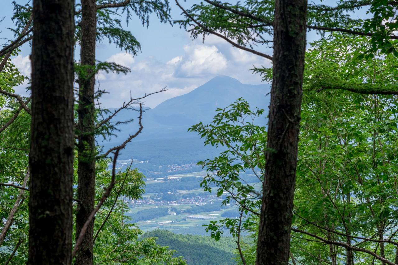 200719雨乞岳-023