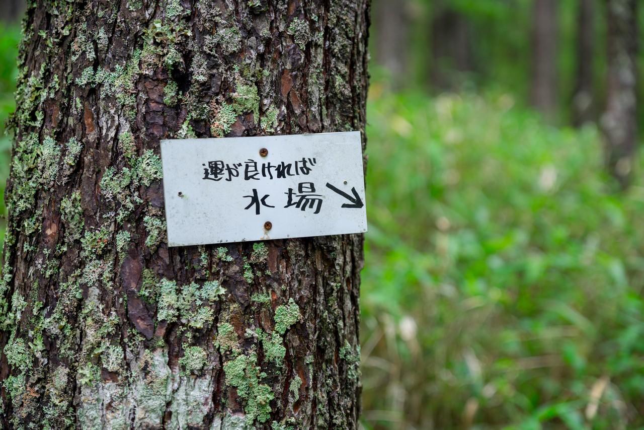 200719雨乞岳-028