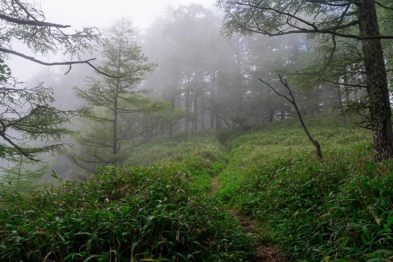 200719雨乞岳-033