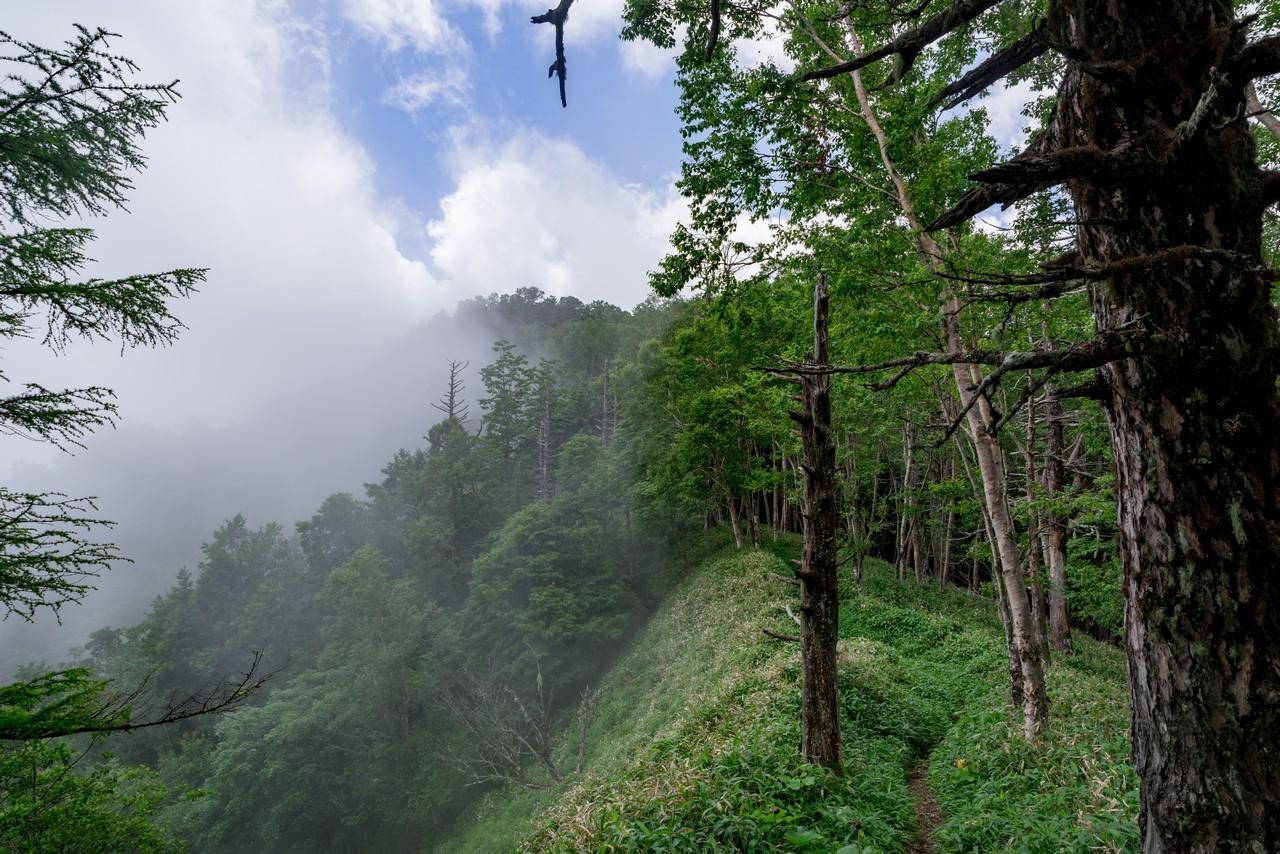 200719雨乞岳-035