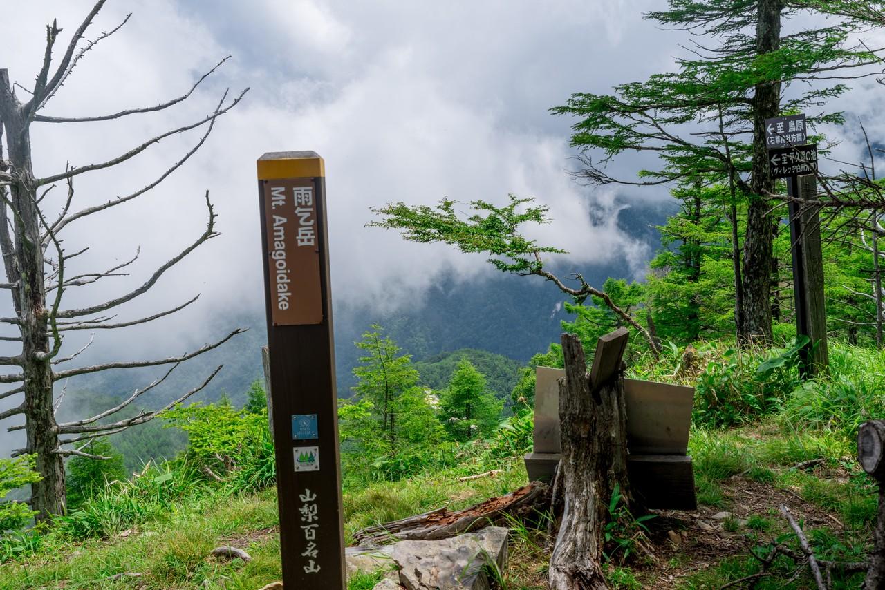 200719雨乞岳-038-1