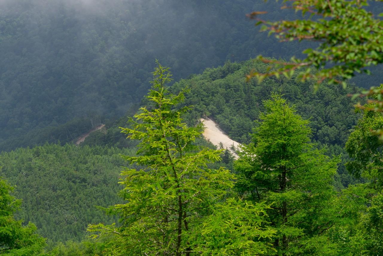 200719雨乞岳-041