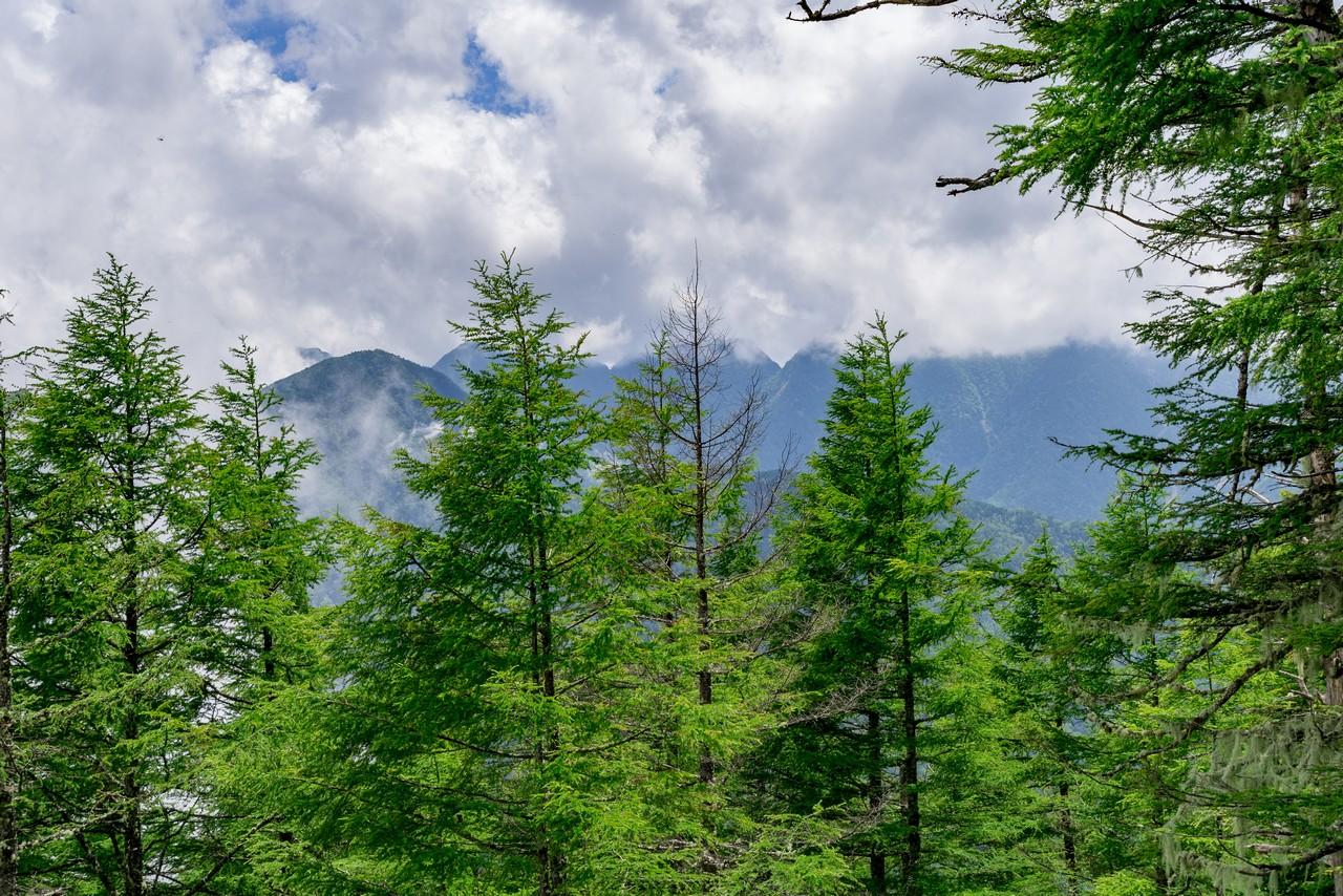 200719雨乞岳-043