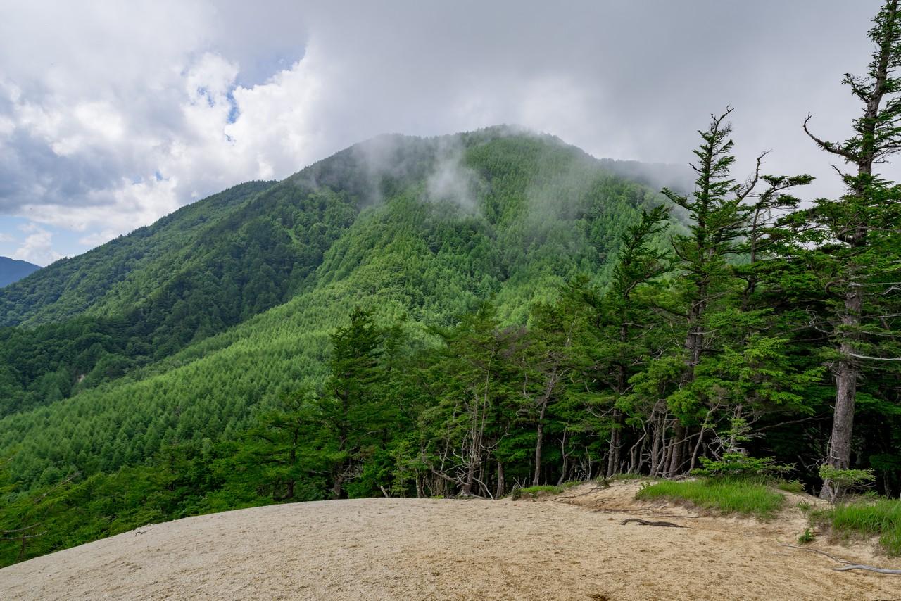 200719雨乞岳-051