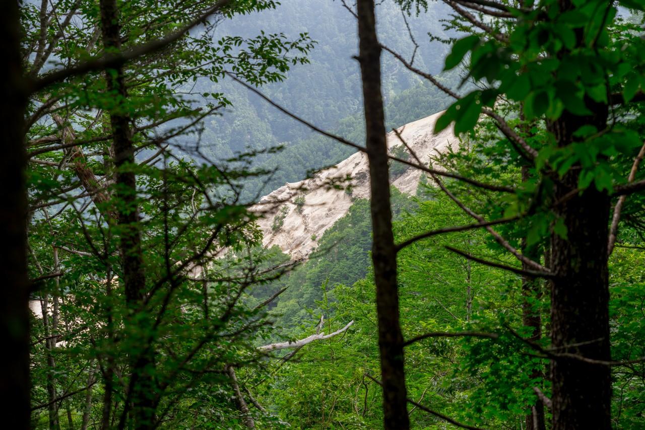 200719雨乞岳-063
