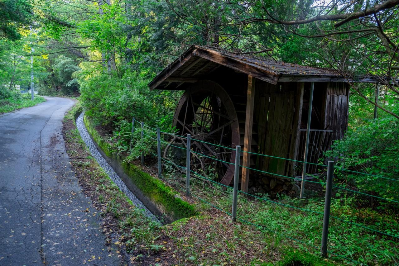 200719雨乞岳-073