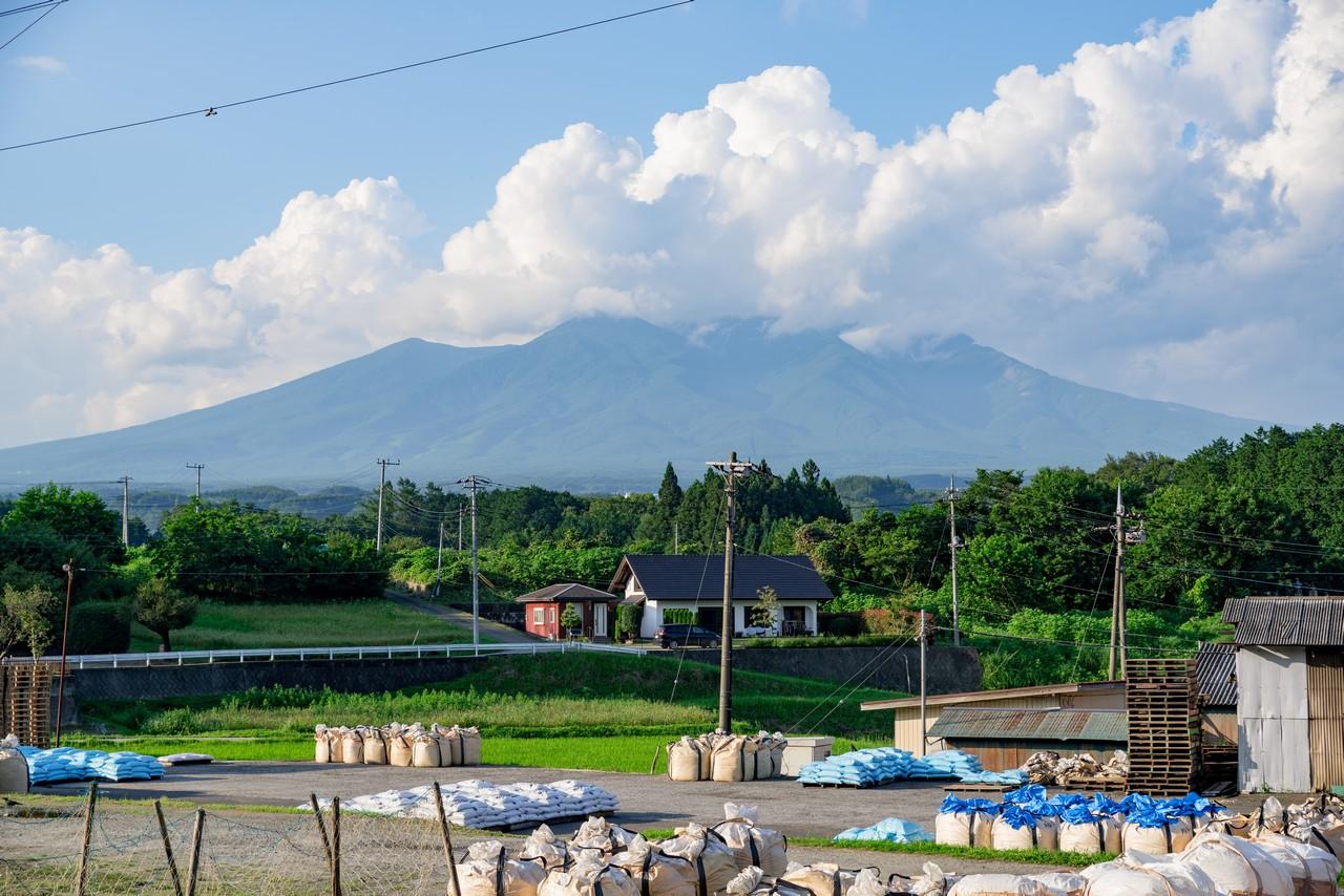 200719雨乞岳-076