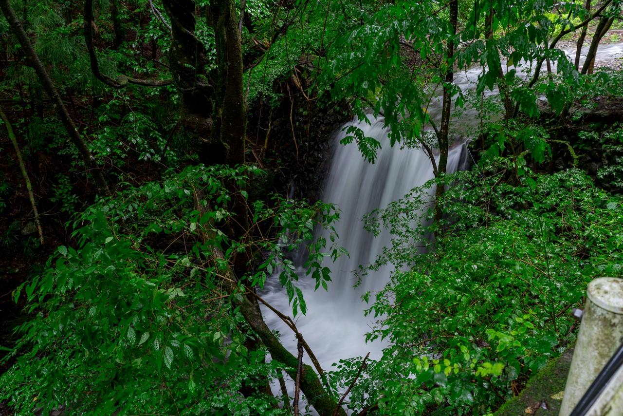 200726檜原滝巡り-012
