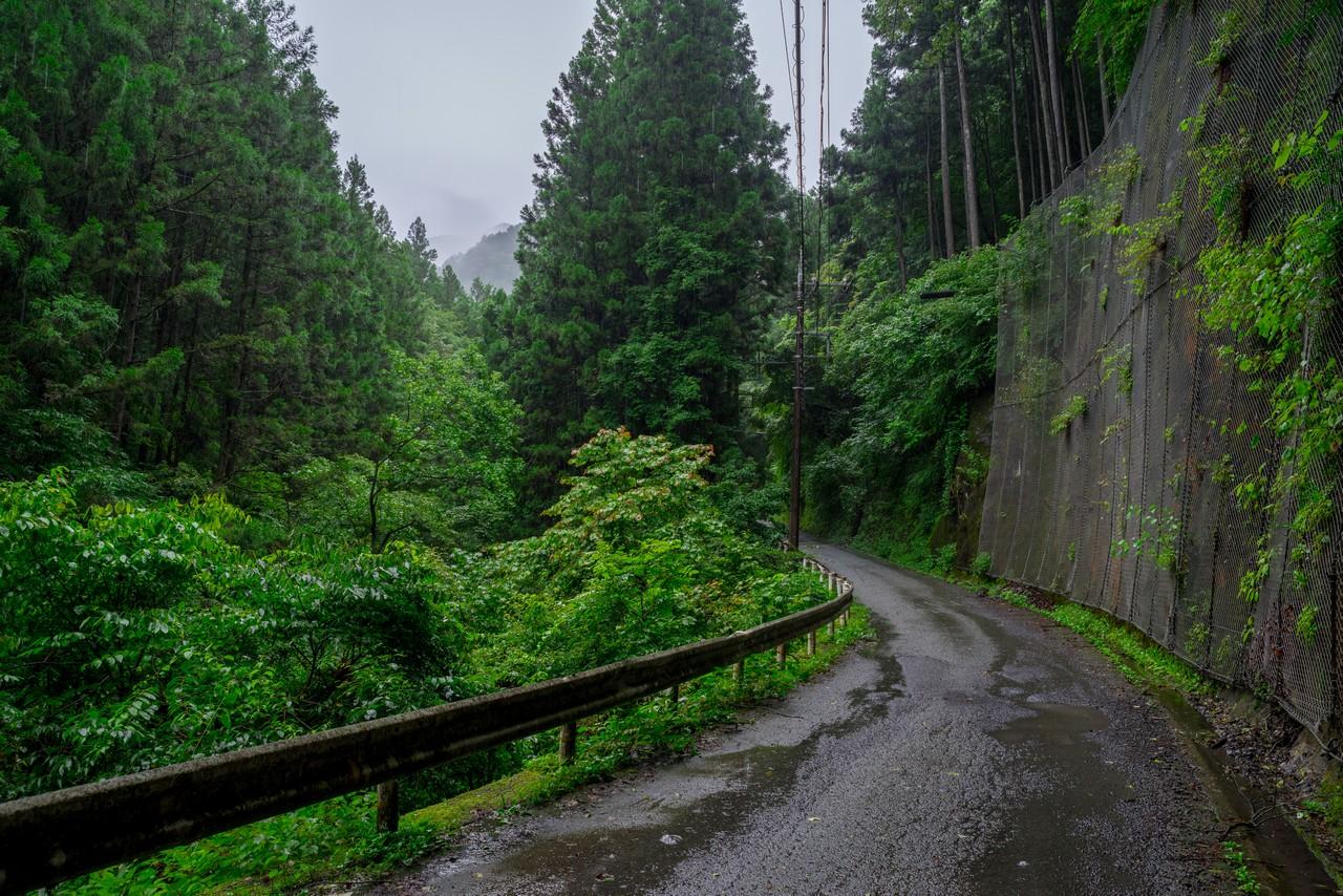 200726檜原滝巡り-013