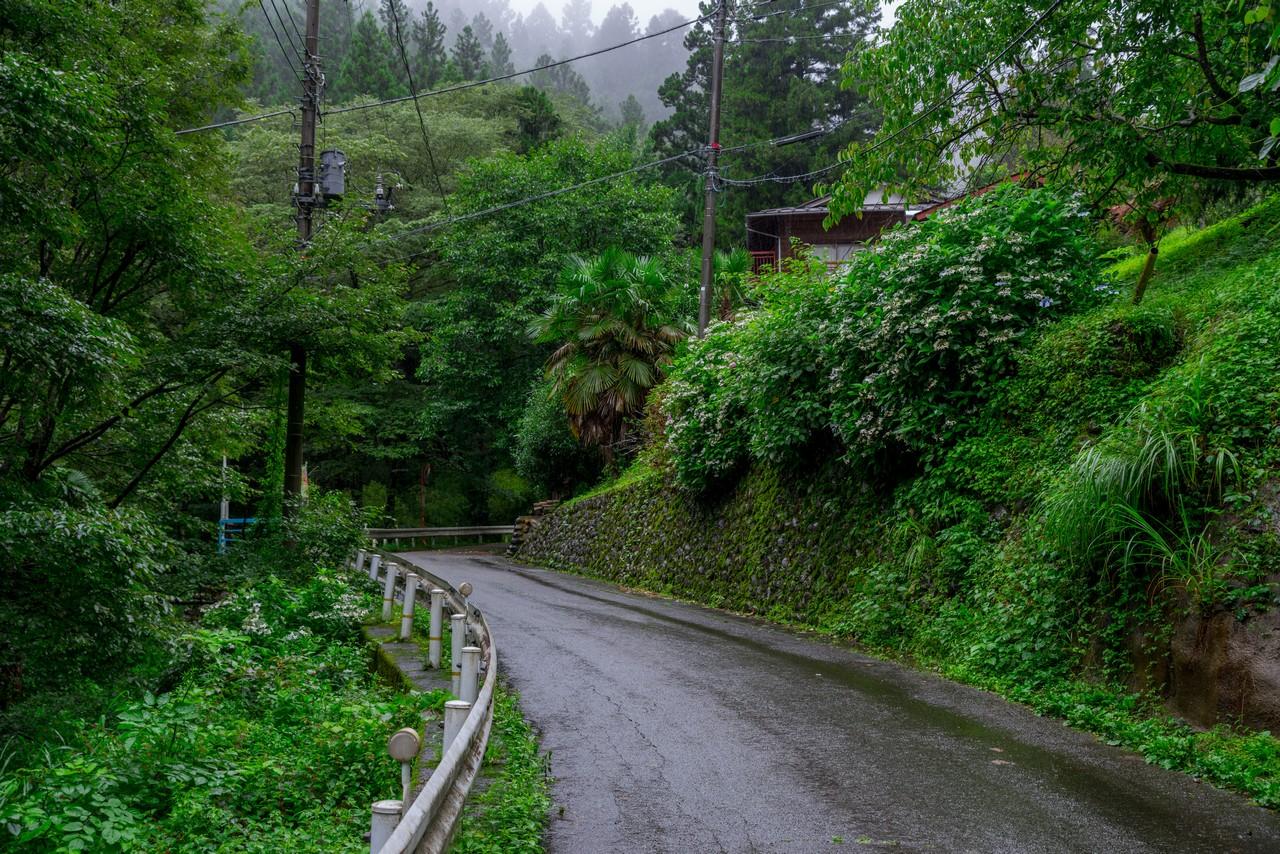 200726檜原滝巡り-017