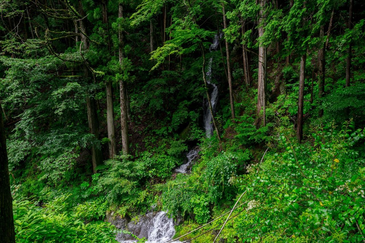200726檜原滝巡り-022