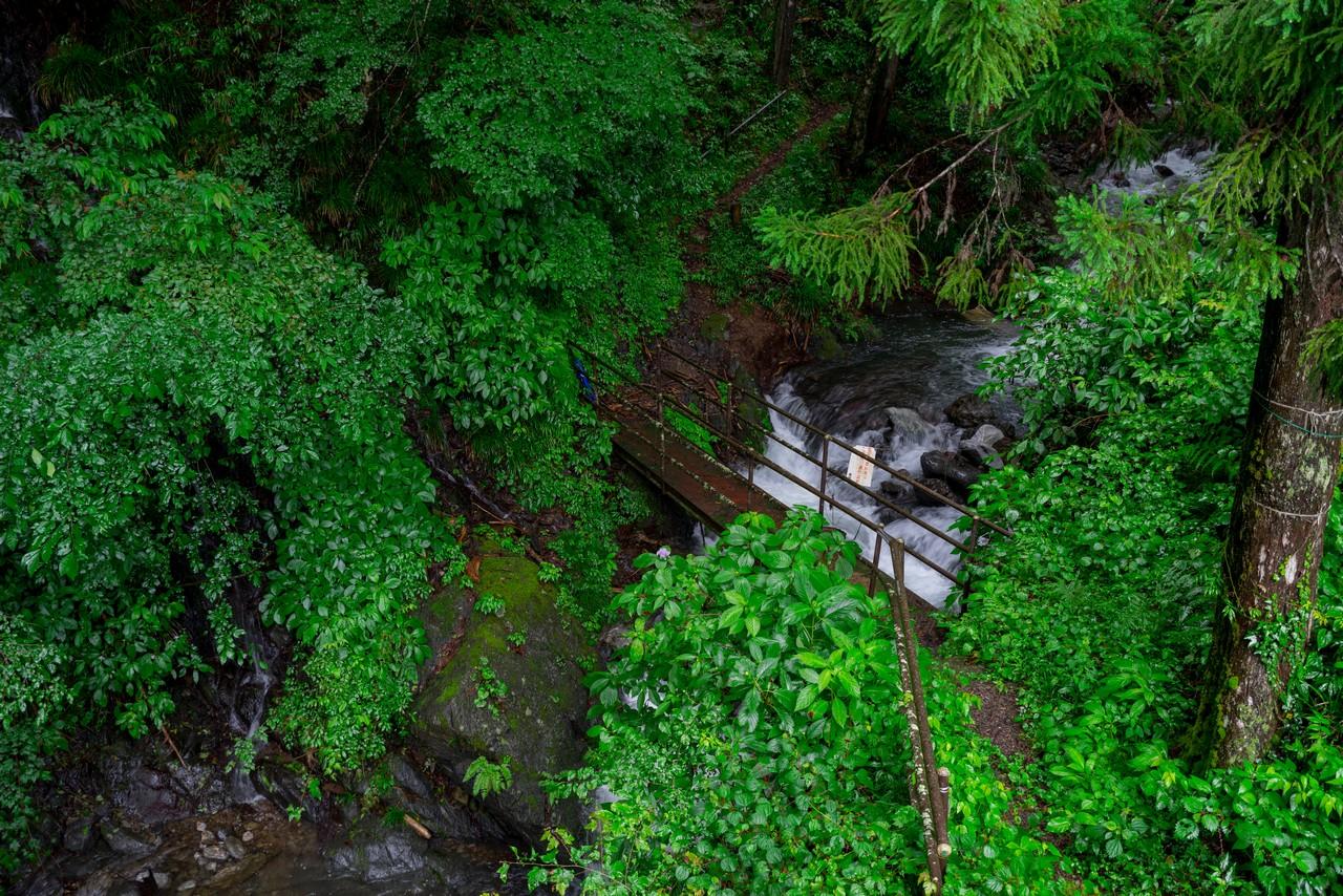 200726檜原滝巡り-024