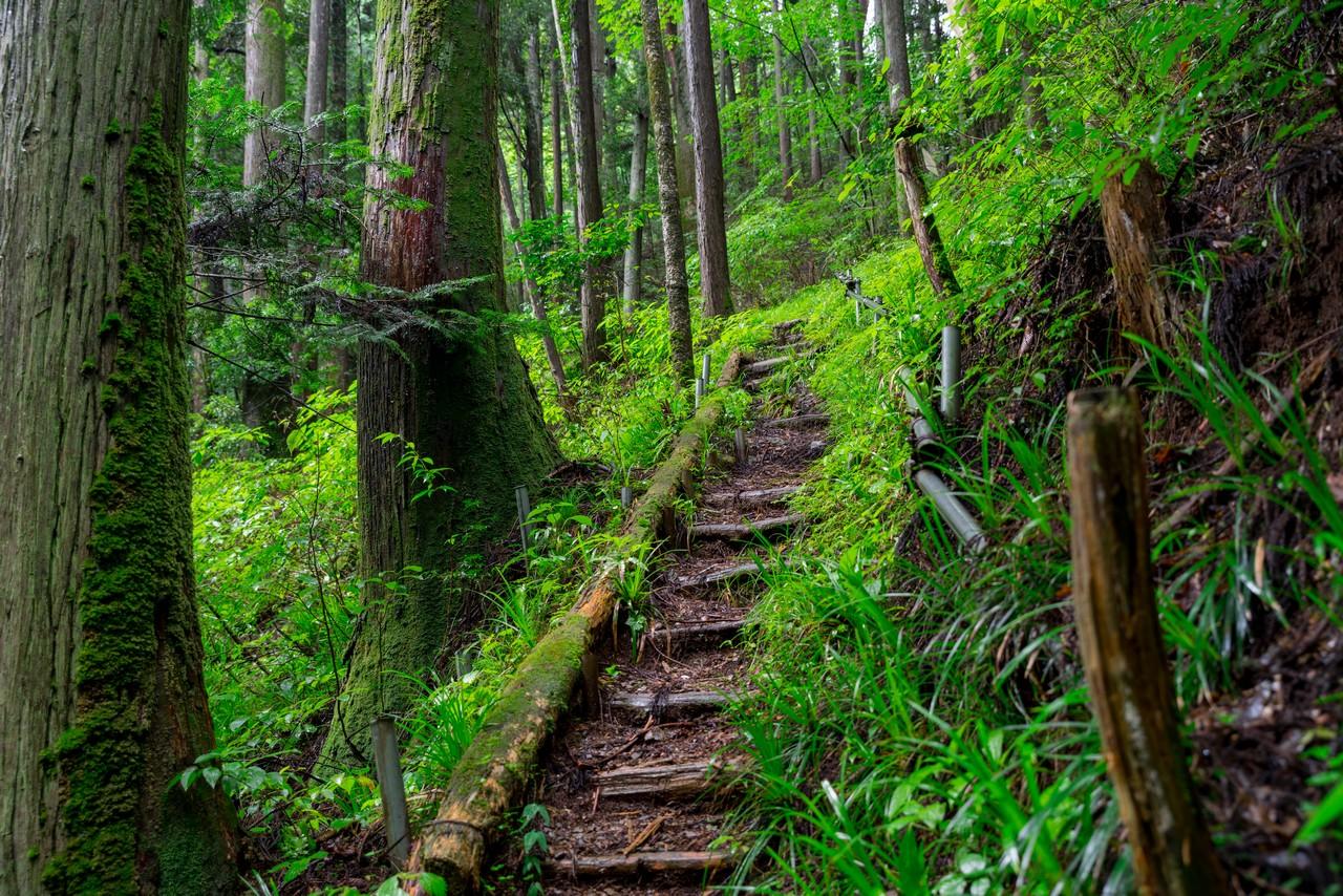 200726檜原滝巡り-025