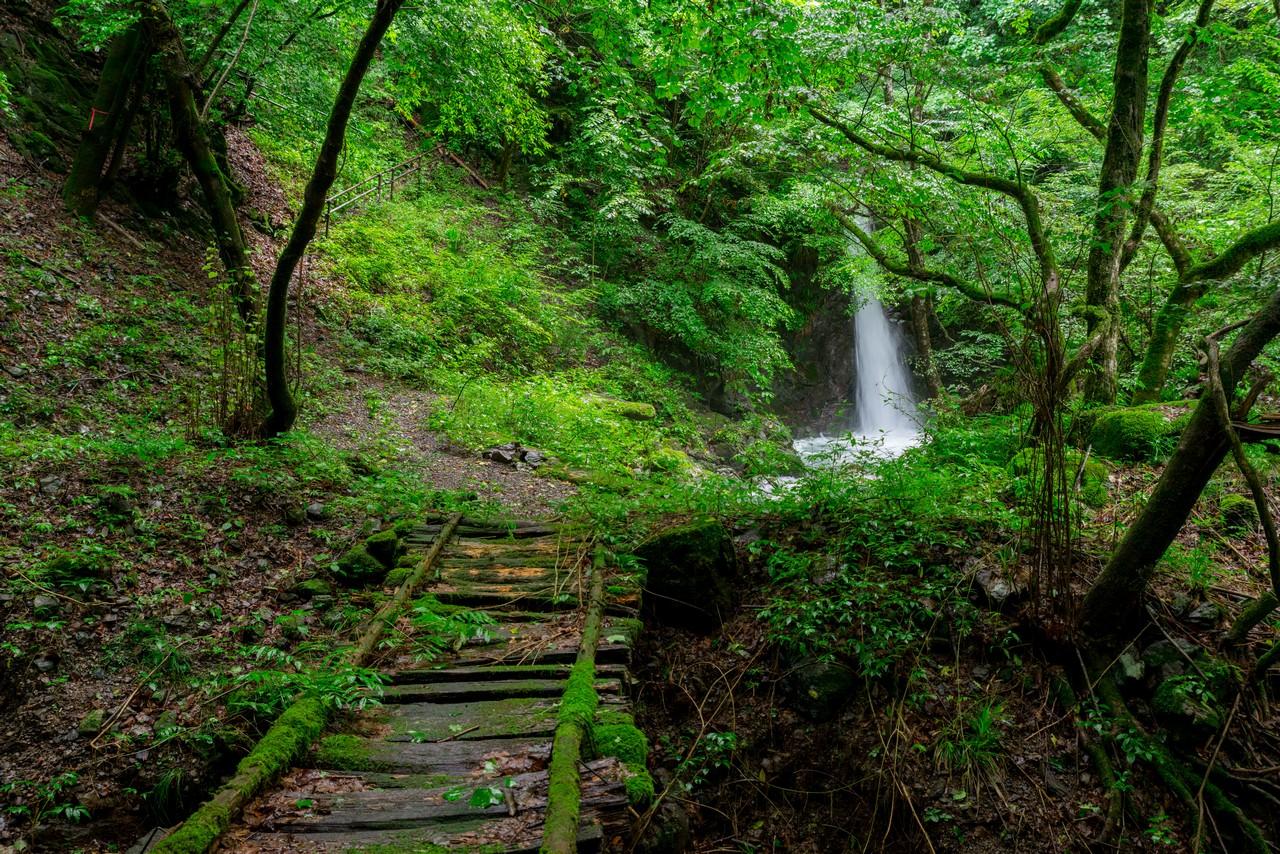 200726檜原滝巡り-027