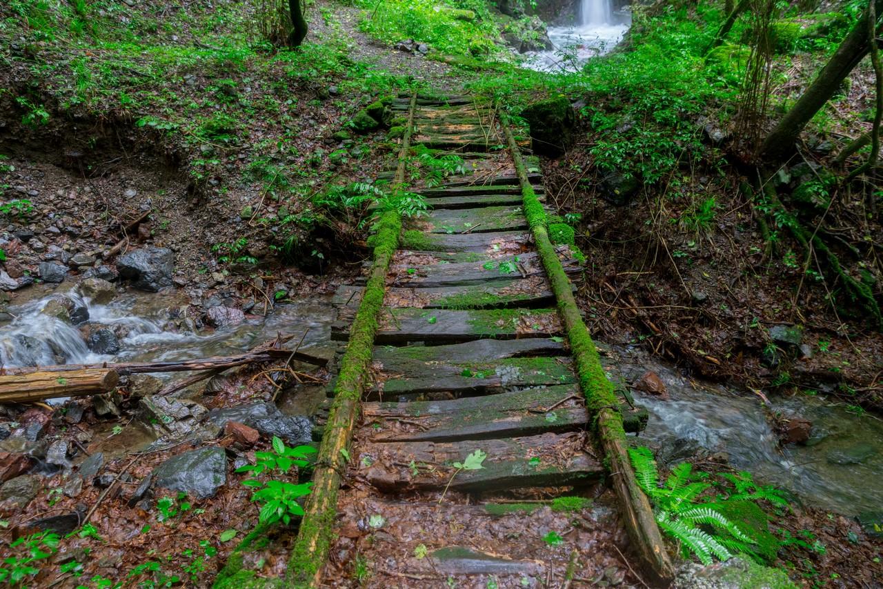 200726檜原滝巡り-028