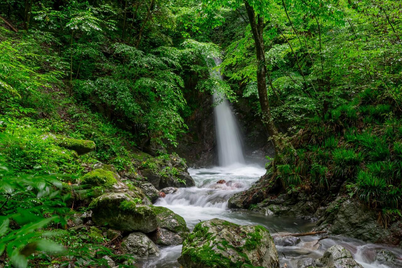 200726檜原滝巡り-029
