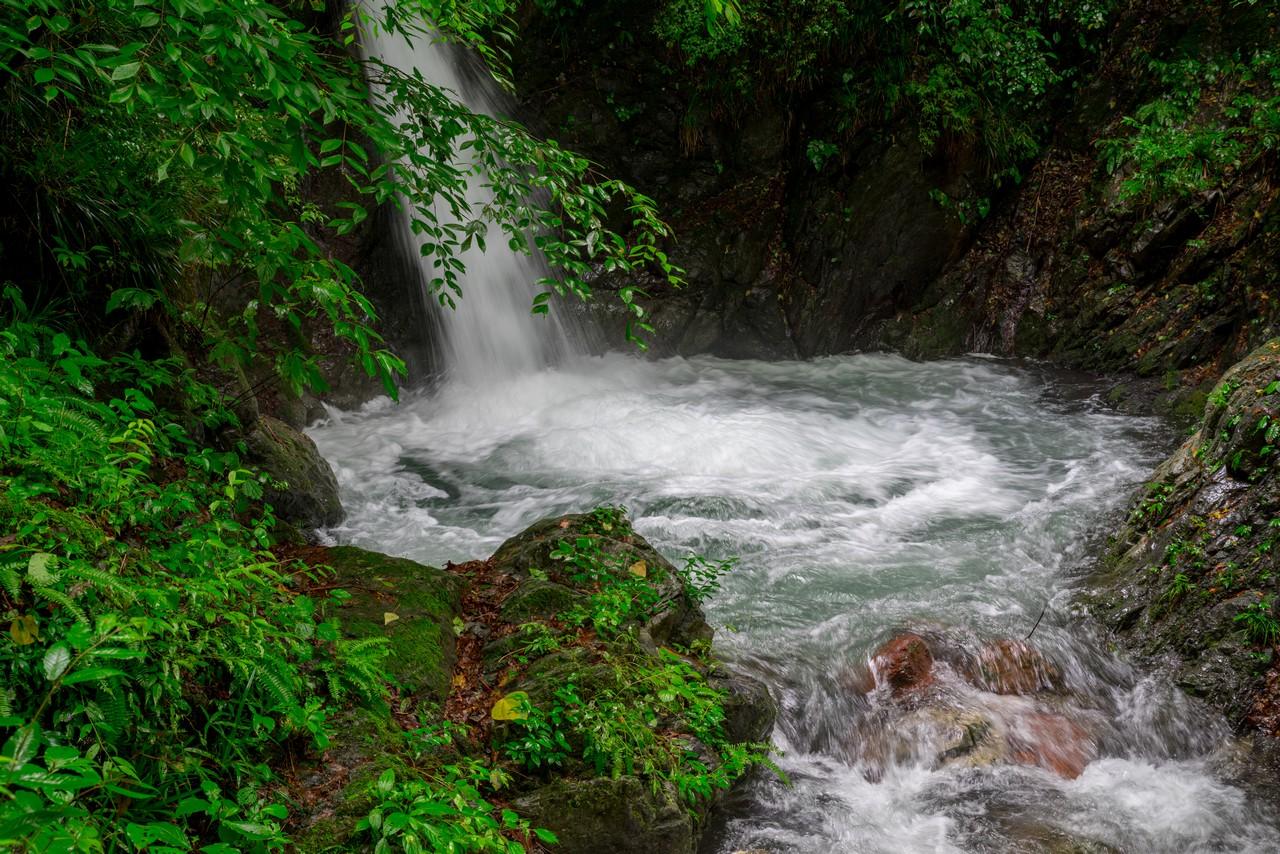 200726檜原滝巡り-030