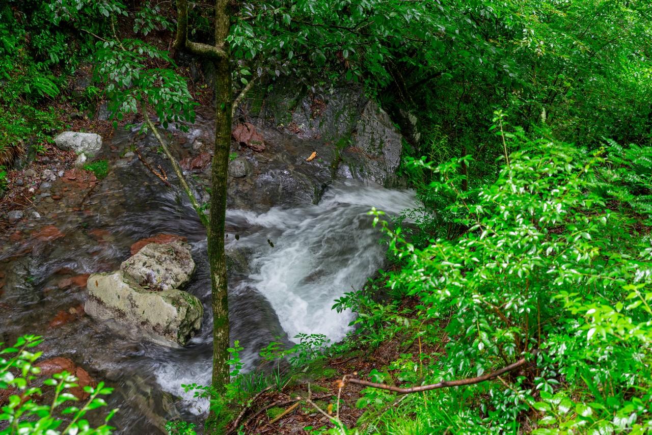 200726檜原滝巡り-032