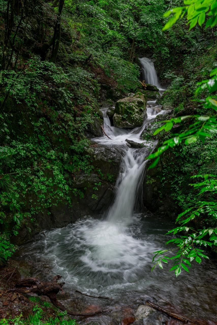 200726檜原滝巡り-033