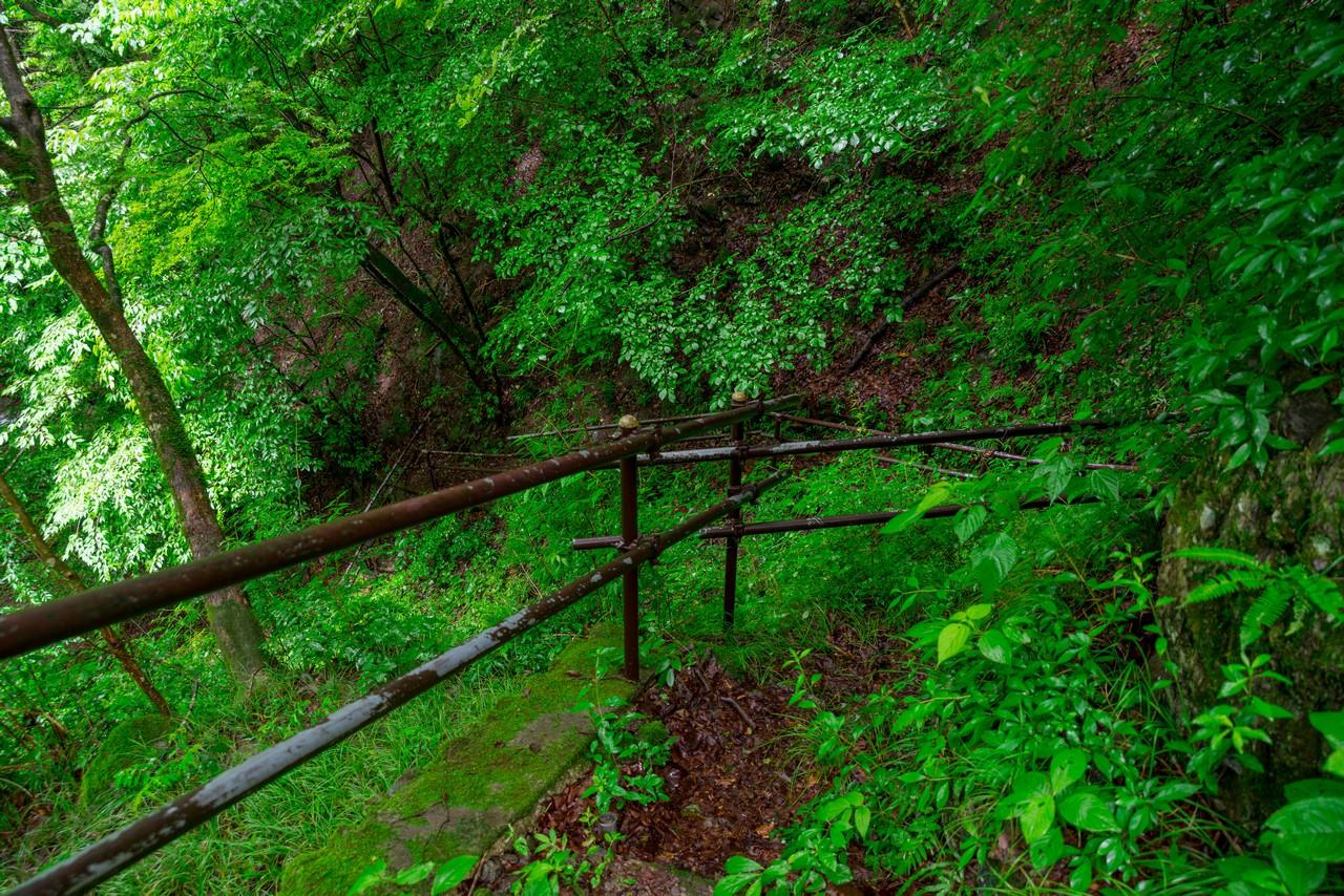 200726檜原滝巡り-034