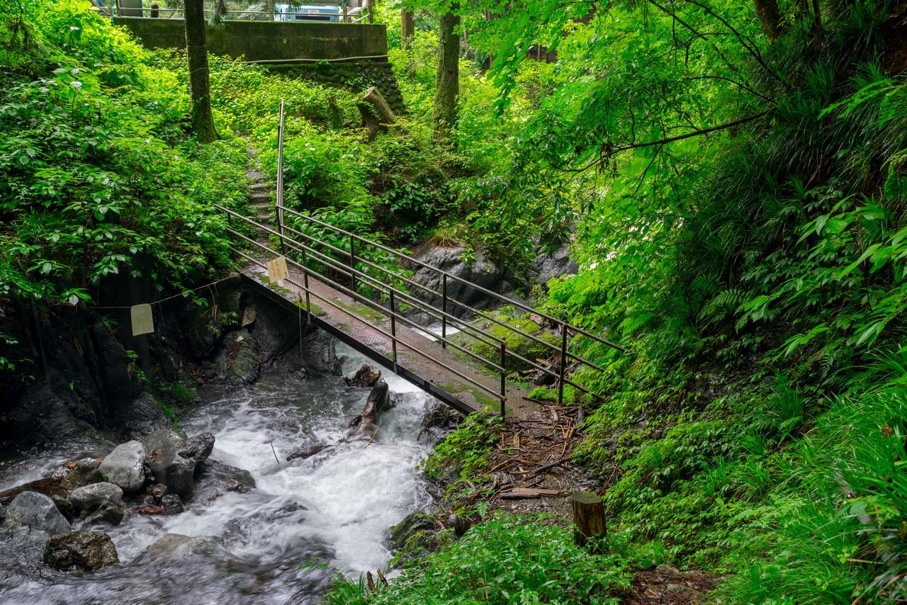 200726檜原滝巡り-036