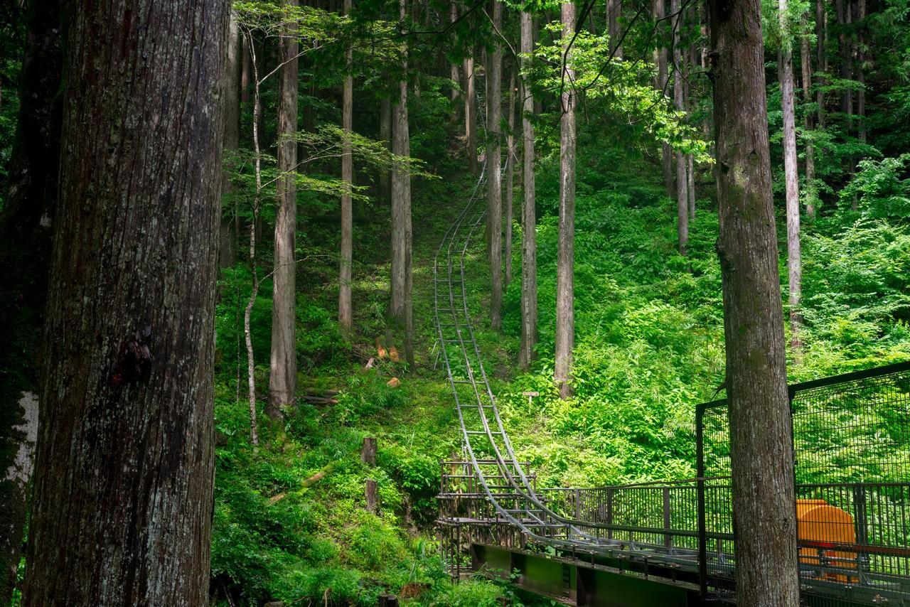 200726檜原滝巡り-038