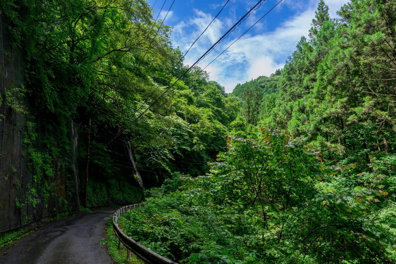 200726檜原滝巡り-039